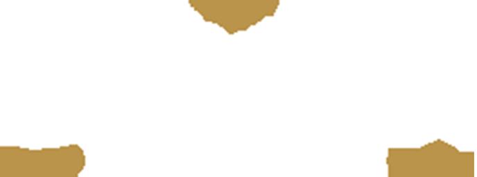 Juwelier Ton van Grinsven Retina Logo